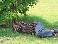 spring-sleeping__www.pakbaz.ir